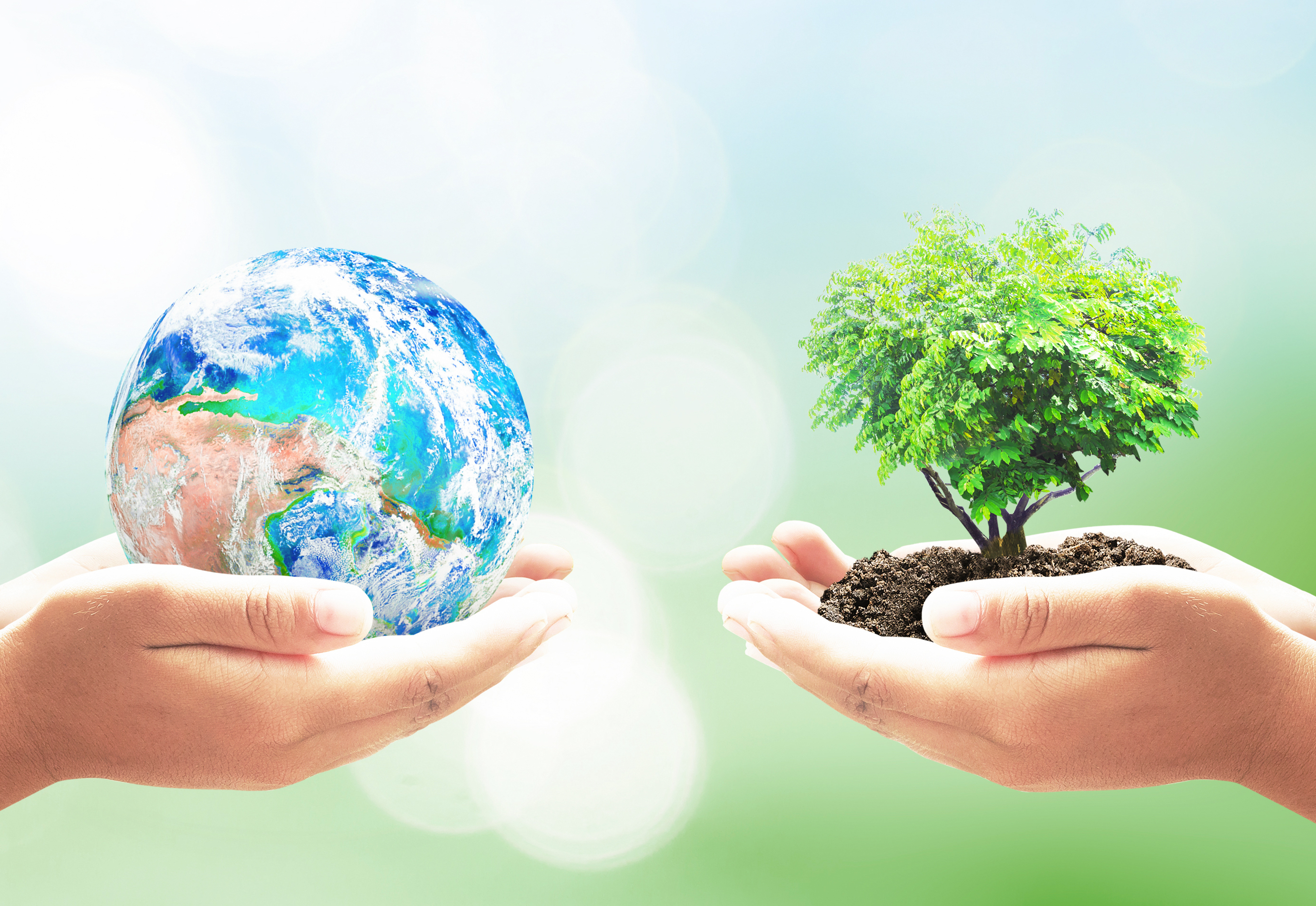Celebrate The 50th Anniversary Of Earth Day Without Leaving Home