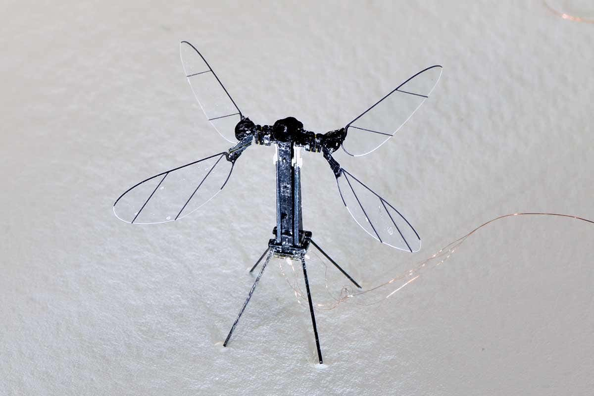 Insect-Inspired RoboBee X-Wing Uses Solar Power To Fly